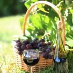 Landwein - Hochformat